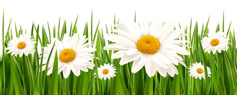 grass clipart free grass and flower clipart collection