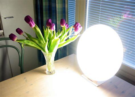 seasonal light disorder ls light therapy wikidoc