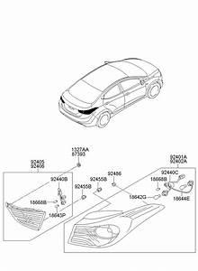 Hyundai Elantra Wire  And  Wiring  Harness  Socket  On