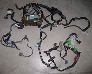 Fs  99-00 Civic Si Dash Wire Harness 1999-2000