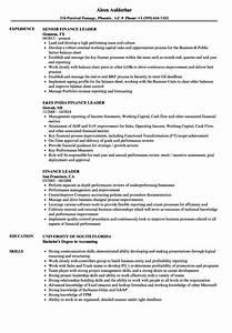 Relevant Experience Resume Samples Finance Leader Resume Samples Velvet Jobs