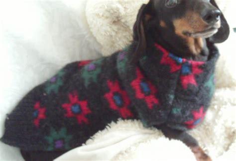 dachshund clothes dress  dog clothes   pets