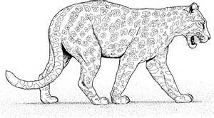 HD wallpapers leopard mask templates to print