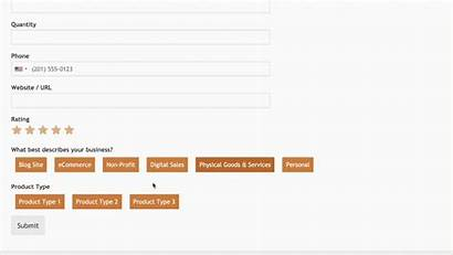 Checkbox Multiple Choice Form Selections Transition Wpforms