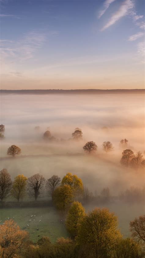 morning fog  wallpaper hd wallpaper background