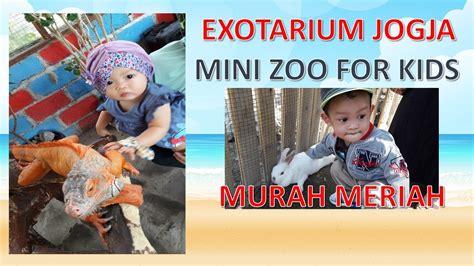 wisata jogja hits exotarium mini zoo murah meriah