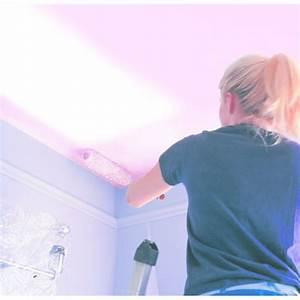 Peinture Pour Plafond : peinture pour plafond indicateur color plafond rep re ~ Melissatoandfro.com Idées de Décoration