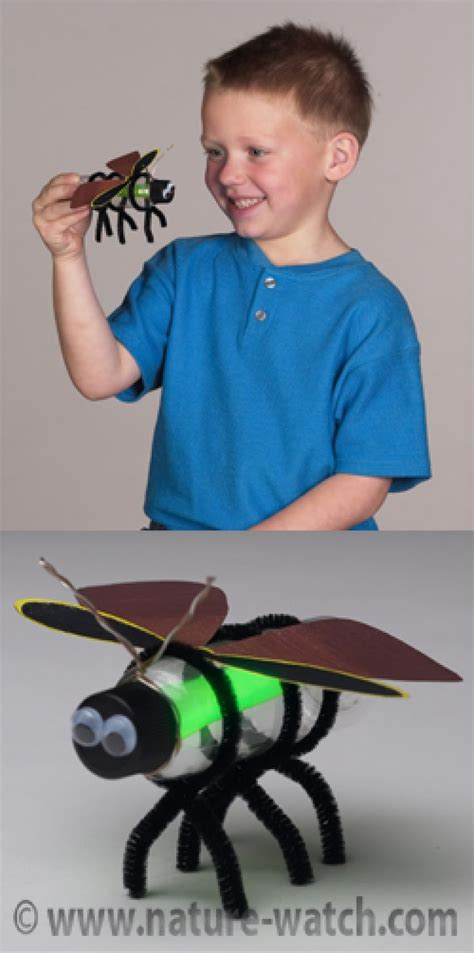 insect craft projects activities  teaching kids