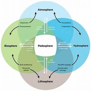 Interactive Processes Linking The Pedosphere With The Atmosphere  Biosphere  Hydrosphere  And Li