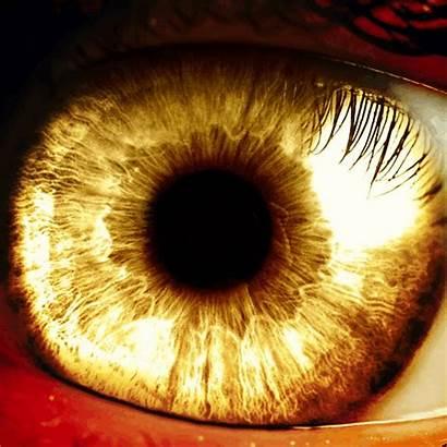 Eyes Golden Rwby Spoilers
