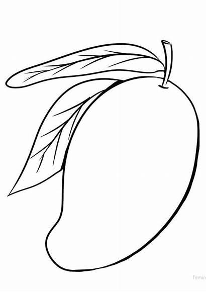 Coloring Mango Indiaparenting