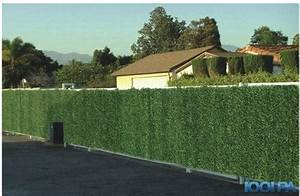 Cache Vue Jardin : cache vue jardin pas cher brise vue 2 m chromeleon ~ Melissatoandfro.com Idées de Décoration