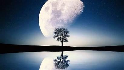 Moon Scene Surreal Tree Wallpapers 1080 1920