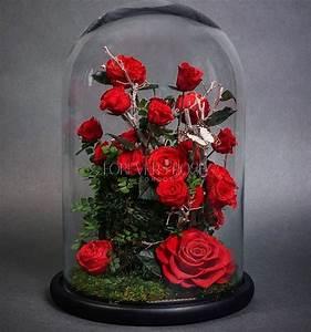 Rose Eternelle Sous Cloche : la belle et la b te vous pouvez vous procurer la ~ Farleysfitness.com Idées de Décoration
