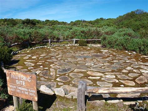 eucalypt habitat grain threshing floor kangaroo island sa