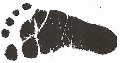 Feet Clip Clipart Footprint Outline Wikiclipart Foot