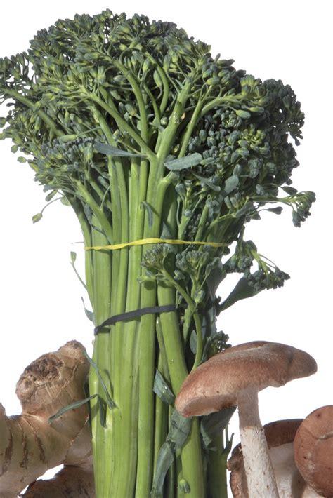 stir fry duck  mushrooms  broccolini recipe nyt