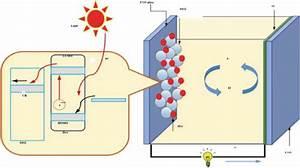 Graphene  Metal Oxide Nanocomposite Usage As Photoanode In Dye