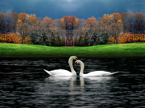 Beautiful Nature Photos  Beautiful Nature