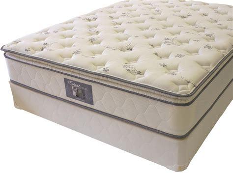 Mattress Companies by Golden Mattress Company Energie King Pillow Top Mattress
