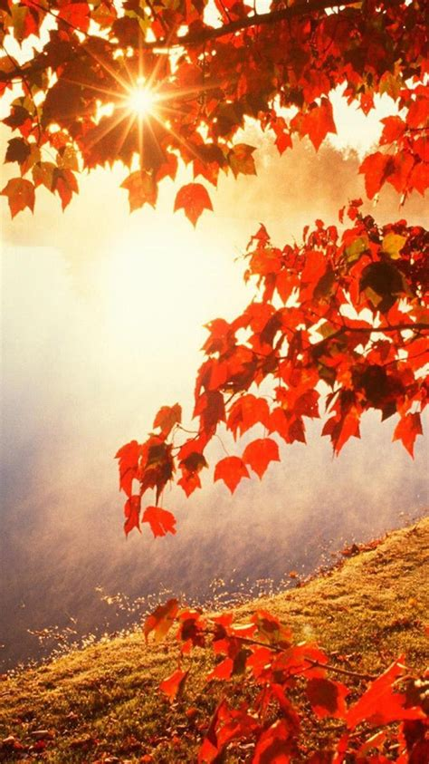 autumn wallpapers uskycom