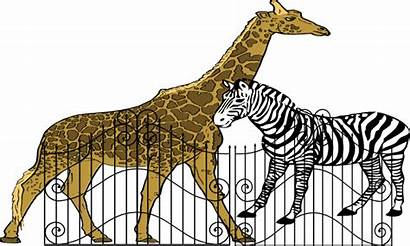 Zoo Clipart Clker Transparent Clip Vector Medium