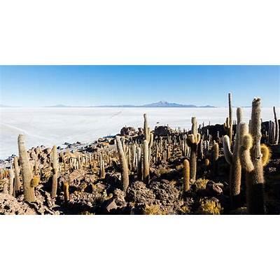 Isla del Pescado - Wikipedia la enciclopedia libre
