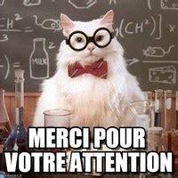 Merci Comme Meme - les huiles essentielles et nos animaux de compagnie atelier nature et animaux par veronique
