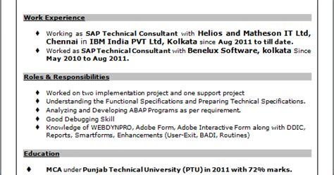 professional resume resume sle of sap technical