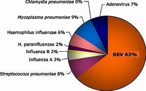Respiratory Syncytial Virus Infection and Bronchiolitis ...