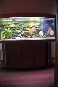 Komplett Aquarium Kaufen : komplett aquarium diskus 150x60x60 in pottum fische aquaristik kaufen und verkaufen ber ~ Eleganceandgraceweddings.com Haus und Dekorationen