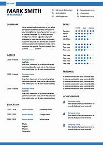 It Manager Cv Sample  Managerial Resume  Team Leader
