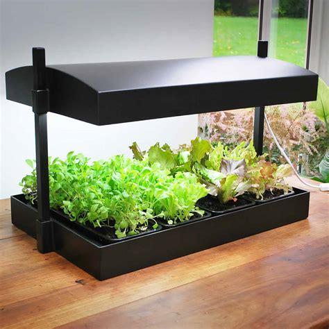 2 c est au programme cuisine kit de bouturage et croissance à lumière t5 hydroponie le floraison