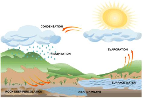 how rain is formed simple science experiments school