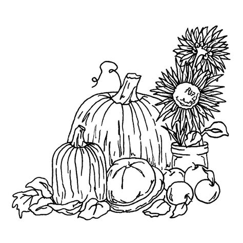 harvest coloring pages  coloring pages  kids