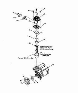 Compressor Pump Diagram  U0026 Parts List For Model 919163550 Craftsman