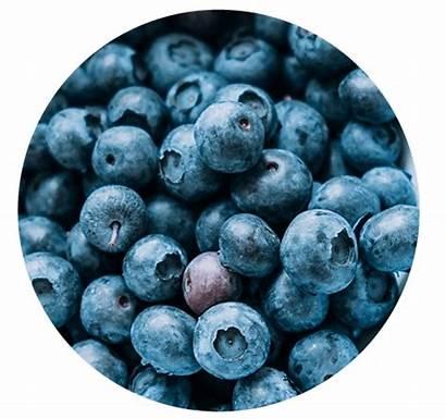 Pcc Blueberry Recipes Pccnaturalmarkets Dairy