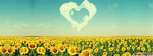 Nature Heart Sunflowers Field Facebook Timeline Cover Picture