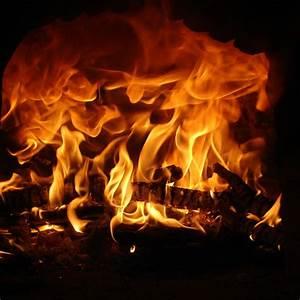 Feuer Den Ofen An : 30 kg karton holz grill ofen kamin heizung brennholz feuer ~ Lizthompson.info Haus und Dekorationen