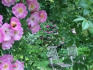Englischer Garten Anlegen : englischer garten anlegen mit 24 einzigartig g stehaus ~ A.2002-acura-tl-radio.info Haus und Dekorationen