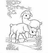 Goat Coloring Pages Toddler Printable sketch template