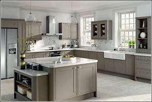 Gray Kitchen Cabinets Wall Color Ideas Savae org