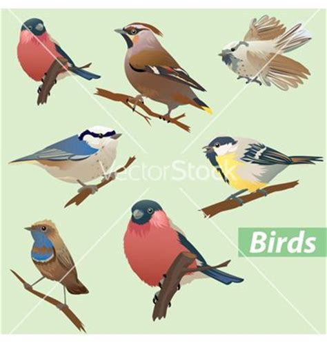 15 best images about rare sparrow logo inspiration on