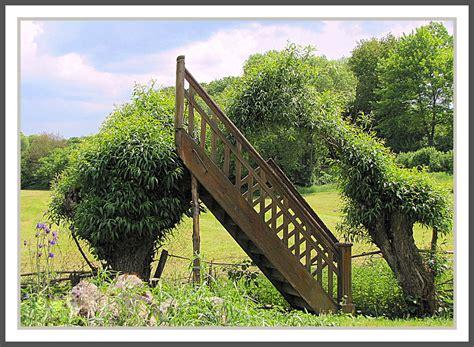 Treppe Im Garten Foto & Bild  Sonstiges, Witziges ;o