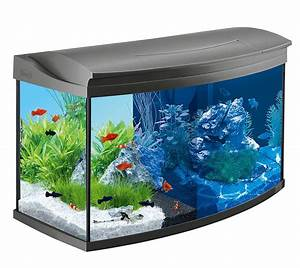 Komplett Aquarium Kaufen : tetra aquaart discovery line led aquarium komplett set inklusive led beleuchtung tag und ~ Eleganceandgraceweddings.com Haus und Dekorationen