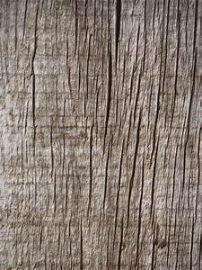 Free, Images, Table, Tree, Branch, Coffee, Texture, Plank, Leaf, Floor, Trunk, Old, Pattern