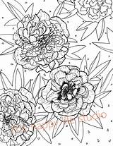 Coloring Peony Flower Peonies Drawing Adult sketch template