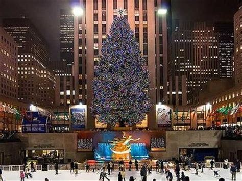 the rockefeller christmas tree lighting rockefeller plaza outdoors pulsd