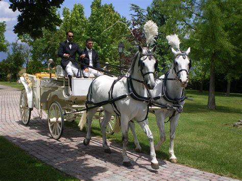 carrozza per matrimonio carrozza con cavalli