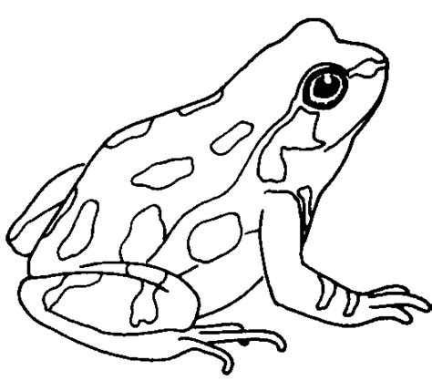 Frog Clipart Black And White Frog Clip Black And White Clipart Panda Free
